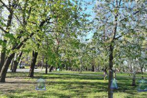 3D прогулка в парке Владимирская горка