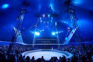 Самый большой цирк в Украине устроил громкую премьеру Итальянского цирка