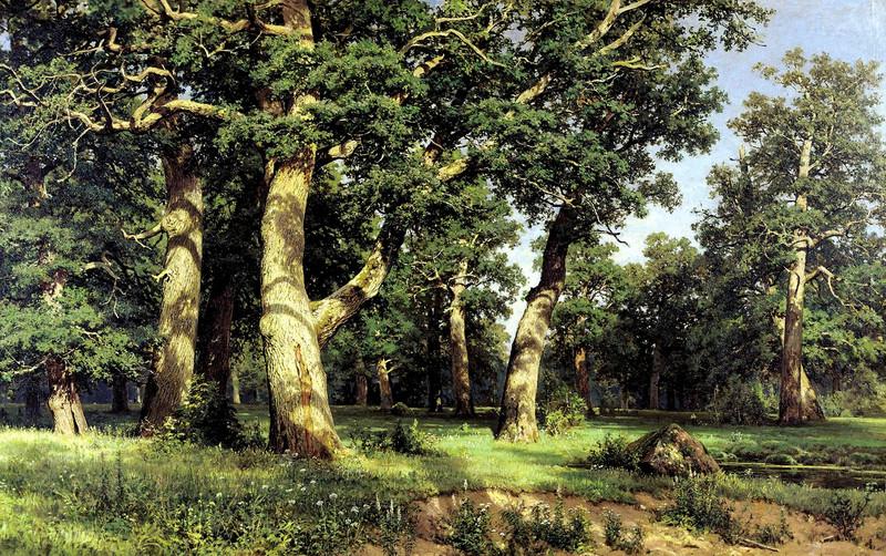 Картина И. Шишкина - Дубовая роща 1887 г.рисунок 2