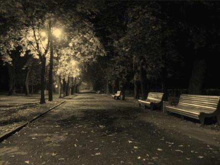 аллея к беседке в вечернее время на владимирской горке  черно-белая фото